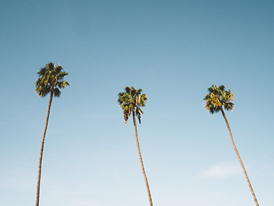 PI PLMx San Diego 2019